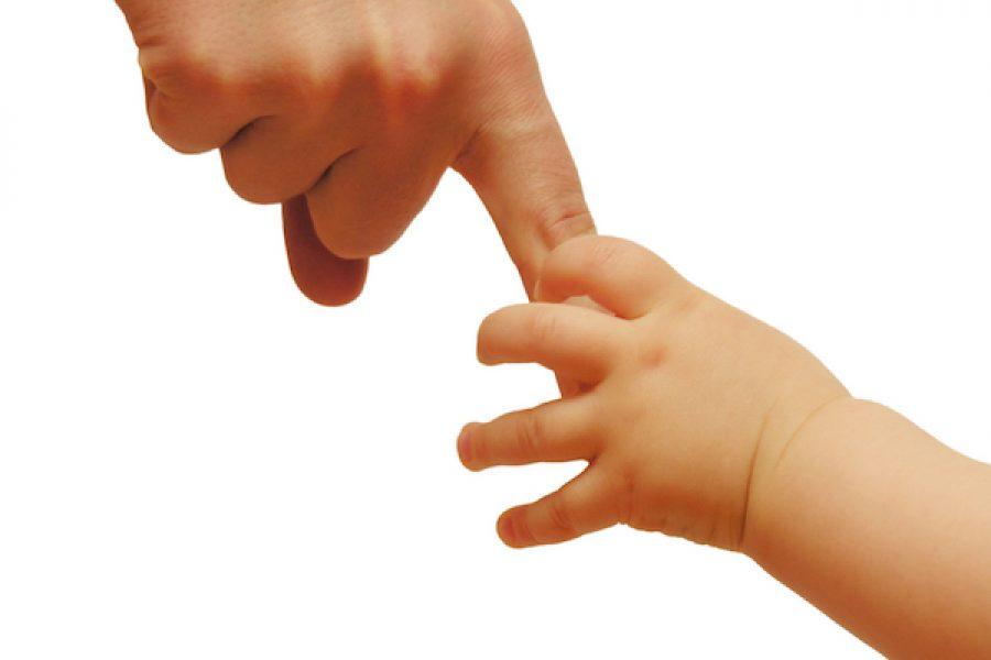 Las manos: nuestras herramientas más increíbles