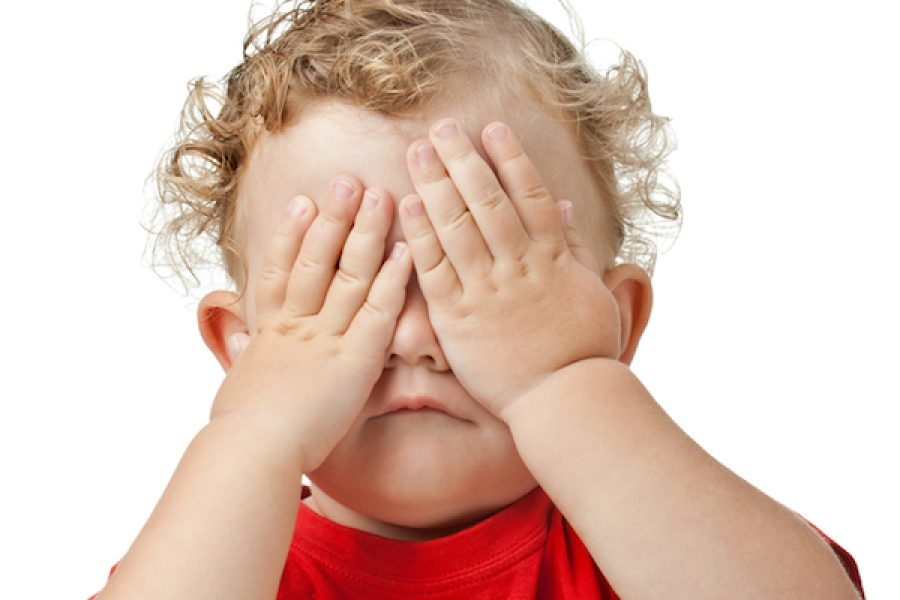 Object Permanence: So Much More than Peek-a-Boo!