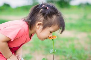 What Can We Learn from Toddlers About Mindfulness?