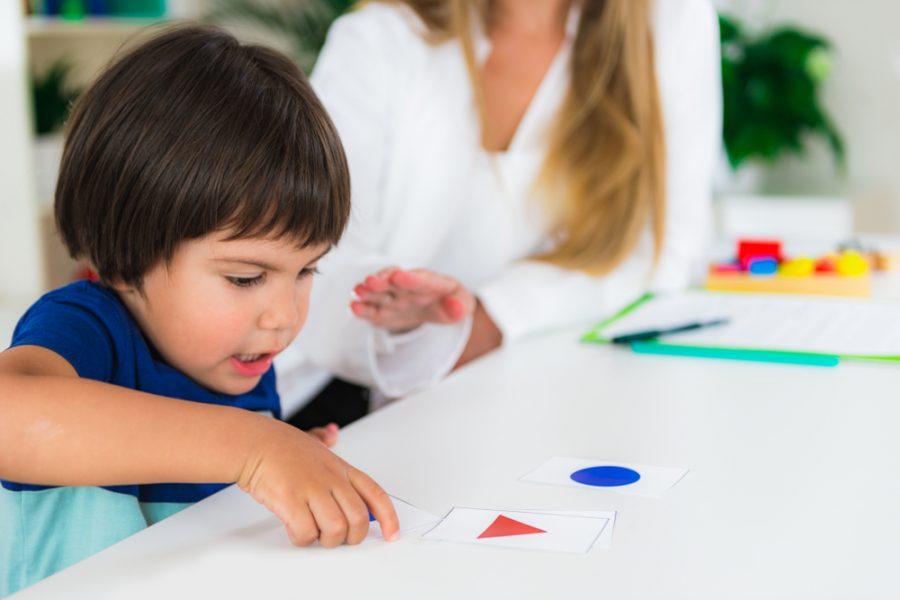 Autism & Cognitive Development
