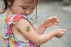 Encouraging your toddler's curiosity