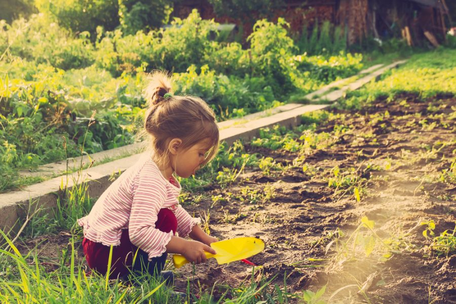 Benefits of Gardening with Toddlers