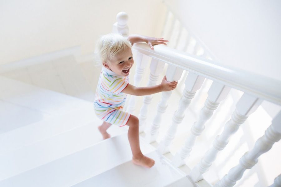 The Evolution of Learning to Climb Stairs