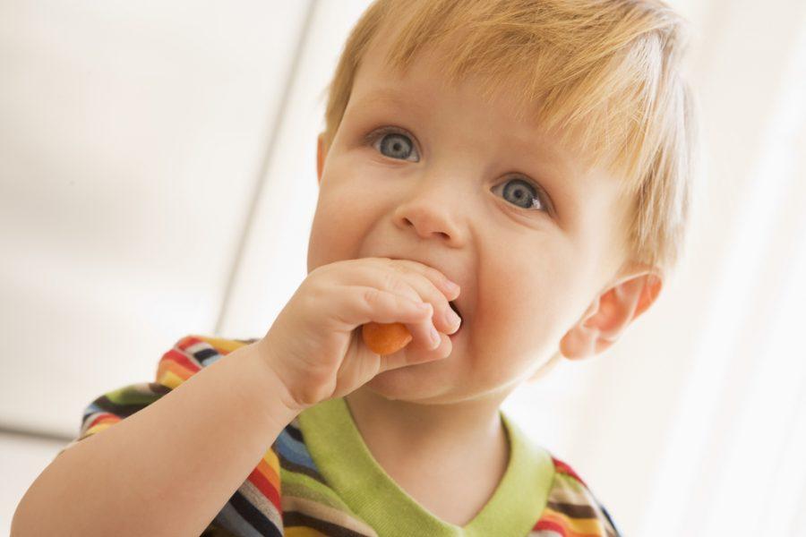 Feeding Your Vegan Baby or Toddler